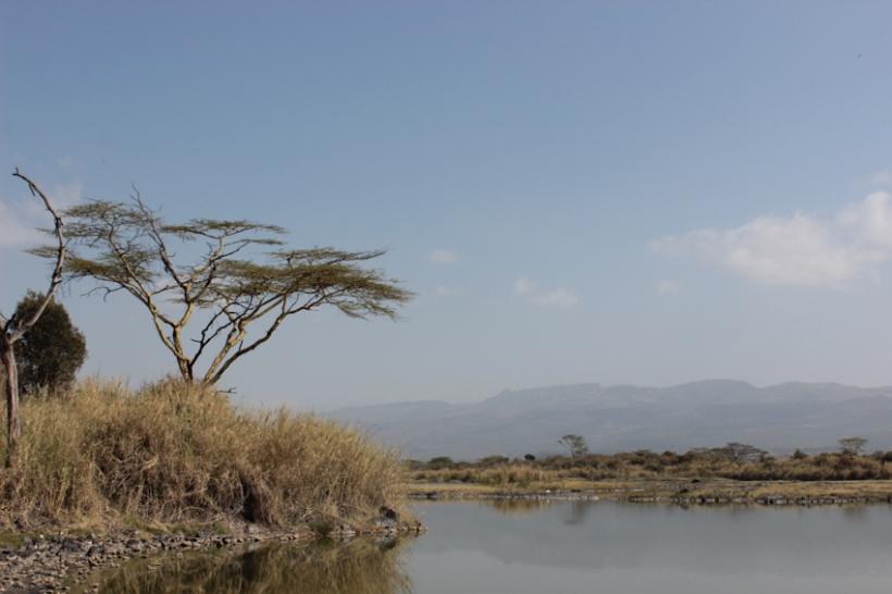 Landscape in Elementaita, Kenya.